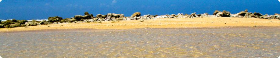 Aruba Reef Beach apartment | Hotels in Aruba | Aruba ...